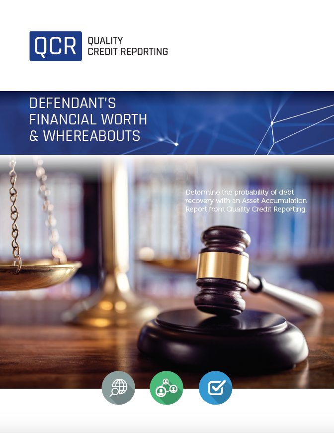 Defendant's Financial Worth & Whereabouts Brochure