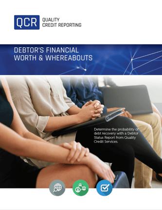 Debtors Financial Worth Report Flyer